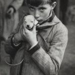 André Kestész, le marché aux animaux